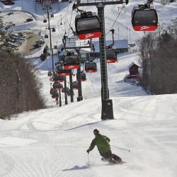 Ski Stowe