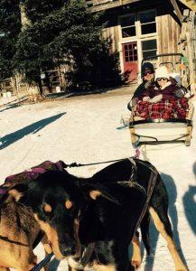 vermont dog sled tour