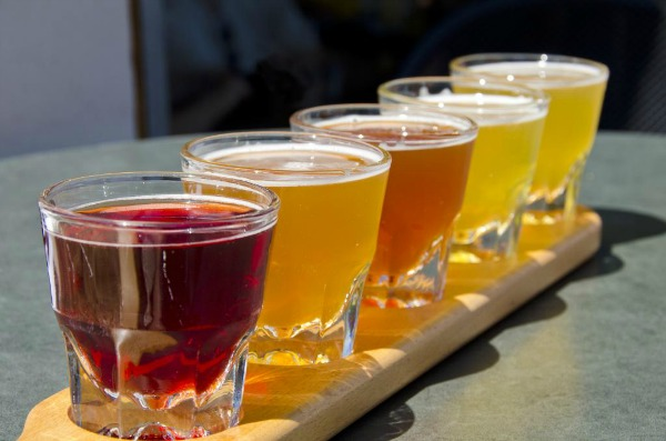 Vermont beer tasting