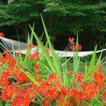 Gardens of Stowe - Stone Hill Inn