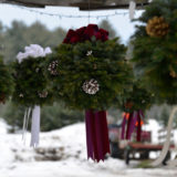 Christmas Tree Farm in Vermont