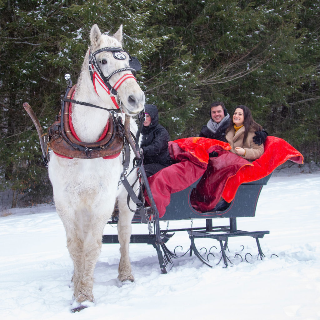 Sleigh Rides in Stowe