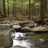 Trail Running Guided in Stowe, Vermont